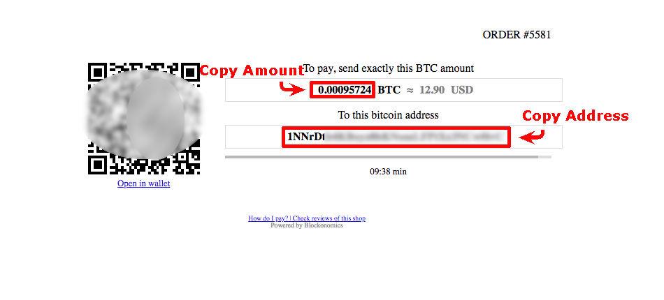 blockonomics payment page